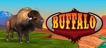 <div>Let's go on a safari!</div>